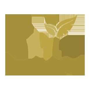 Escuela Savia